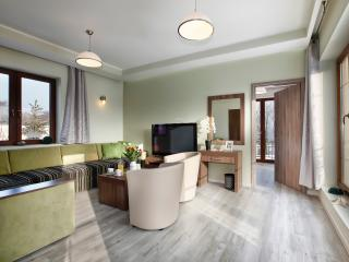 3 bedroom Condo with Internet Access in Gdansk - Gdansk vacation rentals