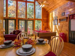 ROMANTIC GETAWAY Pigeon Forge Tn   Wifi,HotTub Yr Pool ,Pool Table - Pigeon Forge vacation rentals