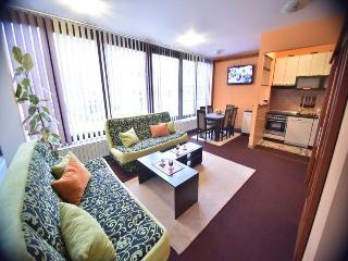 Apartment Sarajevo Center Drvenija - Sarajevo vacation rentals