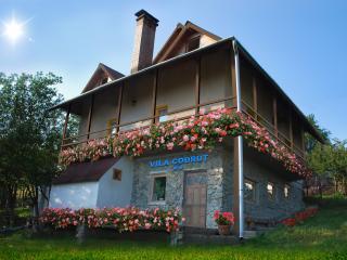 Cabana Codrut - a chalet in Dracula's land - Petrosani vacation rentals