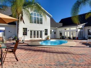 Orlando, Daytona New Smyrna Deltona Suite Sleeps10 - Deltona vacation rentals