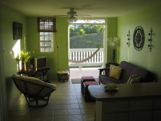Nice Condo with Deck and Internet Access - Rincon vacation rentals