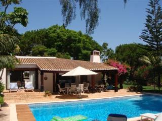 Villa Orquide - - Braga vacation rentals