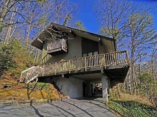 908 Four Seasons Lodge - Gatlinburg vacation rentals