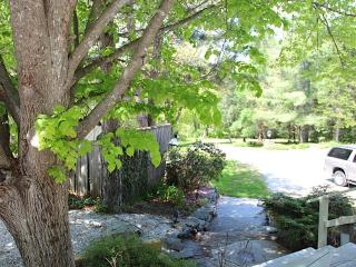 Country Estate - Large House Sleeps 20 - Wilmington vacation rentals