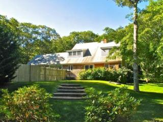 DRAPM - Mink Meadows Family Compound, Private Pool, Walk or Drive to Private Association Beach, Beautifully Landscaped Yard,  De - Vineyard Haven vacation rentals