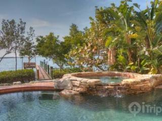 Jungle Shores House - Saint Petersburg vacation rentals