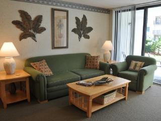 1 bedroom Apartment with Internet Access in Cape Canaveral - Cape Canaveral vacation rentals