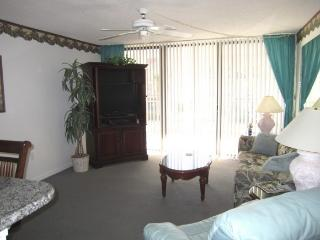 Beach Condo Rental 214 - Cape Canaveral vacation rentals