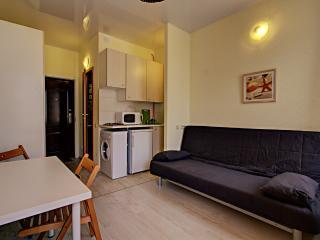 Comfortable Studio Apartment on Grafsky - Saint Petersburg vacation rentals