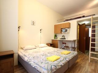 Comfortable Studio on Kolomenskaya - Saint Petersburg vacation rentals