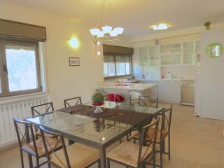 Spacious 3 bedrooms flat in Katamon - Jerusalem vacation rentals