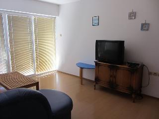 Sea view holiday apartment Vukicevic3, Dalmatia - Biograd na Moru vacation rentals