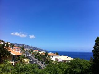 Two Bedroom Apartment - Tourist Zon - Funchal vacation rentals