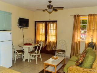 Balcony Rock Apartment 2 - Dover vacation rentals
