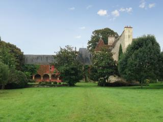 Gorgeous 15th century castle near Vierzon, with 9 bedrooms and set in a huge forest - Indre vacation rentals