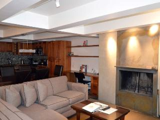 Cottonwoods Unit 2E - Aspen vacation rentals