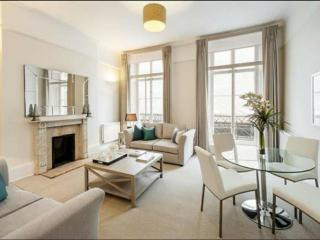 LIVE LUXURIOUSLY BY THE QUEEN! - London vacation rentals