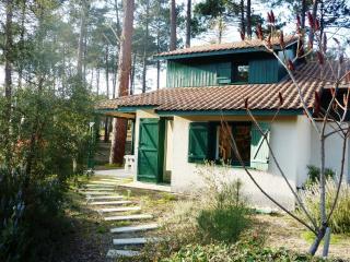 Maison de vacances 3 chambres au milieu des Pins - Moliets et Maa vacation rentals