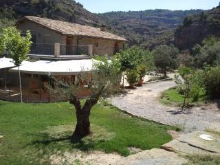 Holiday cottage with garden and barbecue - Huesca Province vacation rentals