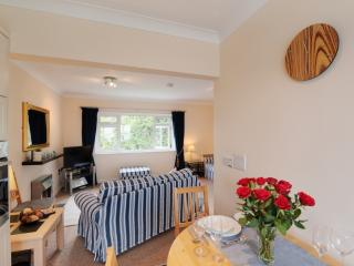 9 Dolphin Court, Brixham, Devon - Brixham vacation rentals