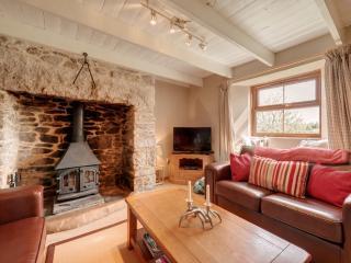 Lower Hawkstor Farm, Bodmin, Cornwall - Bodmin vacation rentals