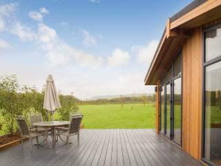 Cedar Lodge, South Downs located in Hassocks, West Sussex - Hassocks vacation rentals