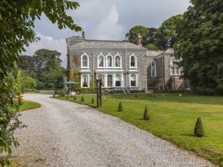 Stowford Manor, Ivybridge, Devon - Ivybridge vacation rentals
