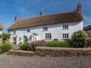 Lake House, Torrington, Devon - Bideford vacation rentals