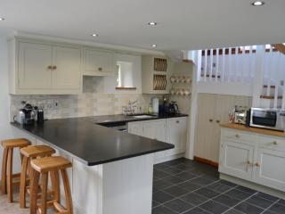 Vine Cottage, Modbury, Devon - Modbury vacation rentals