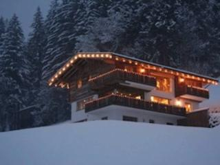 Traum am Wald - Thiersee vacation rentals