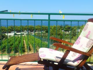 6091 A2 gornji(4+2) - Primosten - Primosten vacation rentals