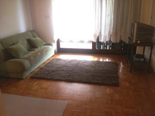 Sunny apartment with terrace (6) - Dobropoljana vacation rentals