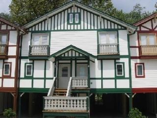 Edelweiss 4 - Helen vacation rentals