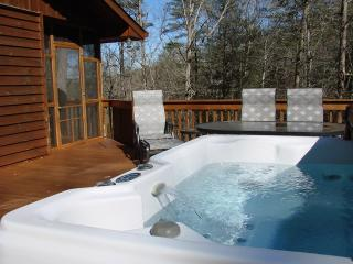 Lakeside Hideaway - Smoky Mountains vacation rentals