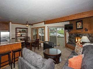 Remodeled 2 BR - WALKING DISTANCE to Ski Slopes - Only $225/nt until 12/15 - Olympic Valley vacation rentals