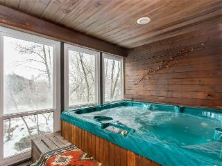 Well-appointed ski-in/out home w/enclosed hot tub & sauna! - Park City vacation rentals