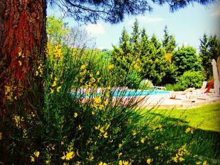 Poggetto Apartments Todi 2 bed - Todi vacation rentals