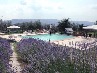 3 bedroom Apartment with Internet Access in Rapale - Rapale vacation rentals
