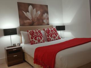 Two Bedroom Apartment Canary wharf A502 - London vacation rentals