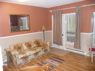 1 bedroom condo at Snowater on Mt Baker. - Maple Falls vacation rentals