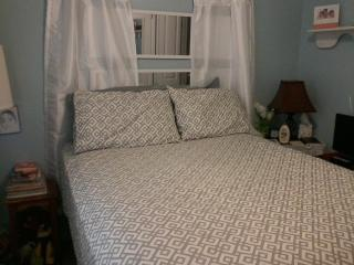 Small and Comfy Short Term stays only - Arlington vacation rentals