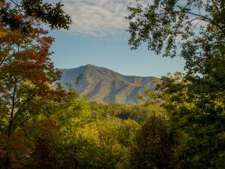 """Halfway to Heaven"" Mountain View, 5 BR Cabin, Arcade, Pool Table, Pool Access - Gatlinburg vacation rentals"