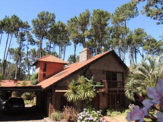 Lumares - Palm - Maldonado Department vacation rentals