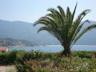 Corse du sud Tiuccia bord de mer - Tiuccia vacation rentals