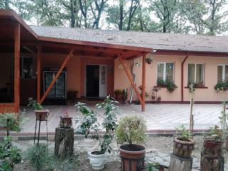 Forest Mirage - group accommodation - Southern Romania vacation rentals