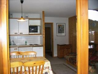 Bright 1 bedroom Apartment in La Tania with Housekeeping Included - La Tania vacation rentals