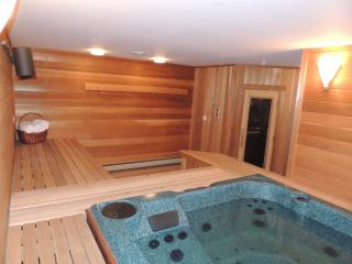 Mt. Snow Paradise - Indoor Jacuzzi and Sauna - Dover vacation rentals