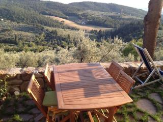 Tuscany Countryside Home, rustic with modern flare - Calenzano vacation rentals