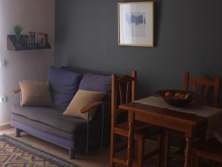 Central quiet apartment,wifi in Poble Sec - Barcelona vacation rentals